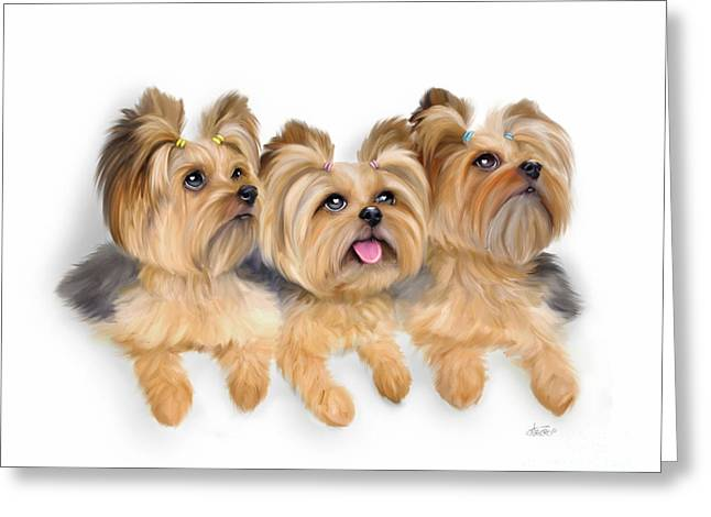 Yorkie Trio Greeting Card