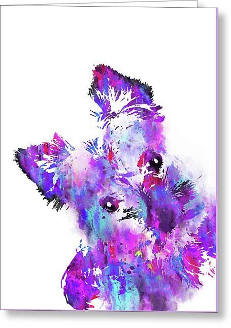 Yorkshire Terrier Greeting Card by Rosalia Simunovic