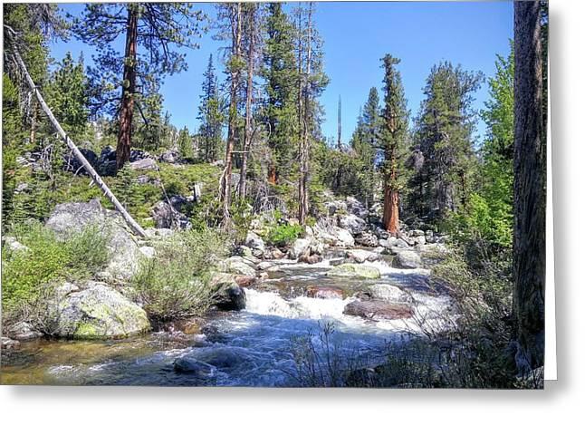 Yosemite Rough Ride Greeting Card