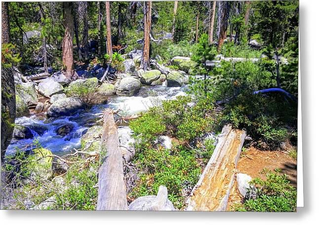Yosemite Adventure Greeting Card