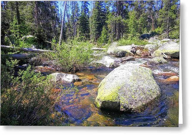 Yosemite Hidden Stream Greeting Card