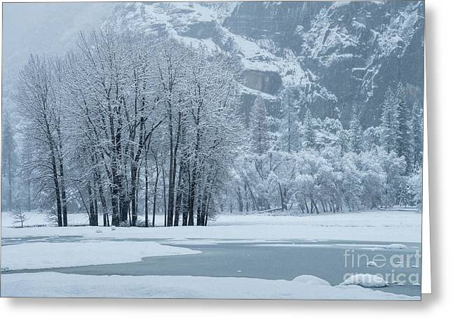 Greeting Card featuring the photograph Yosemite - A Winter Wonderland by Sandra Bronstein