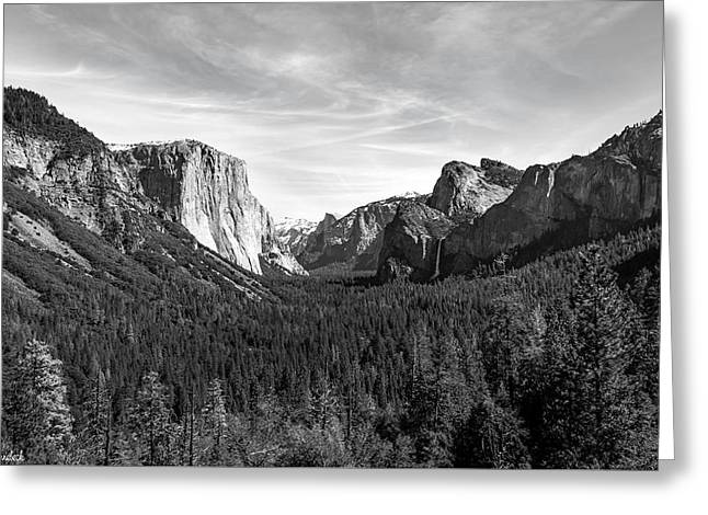 Yosemite B/w Greeting Card