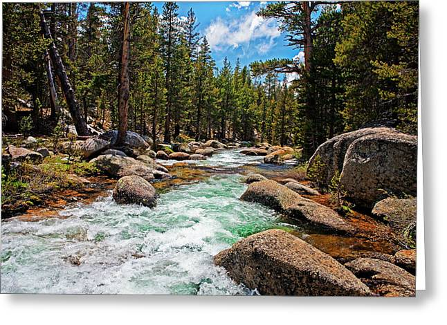 Yosemite Highland River In The Forest Greeting Card by Nathaniel Grant