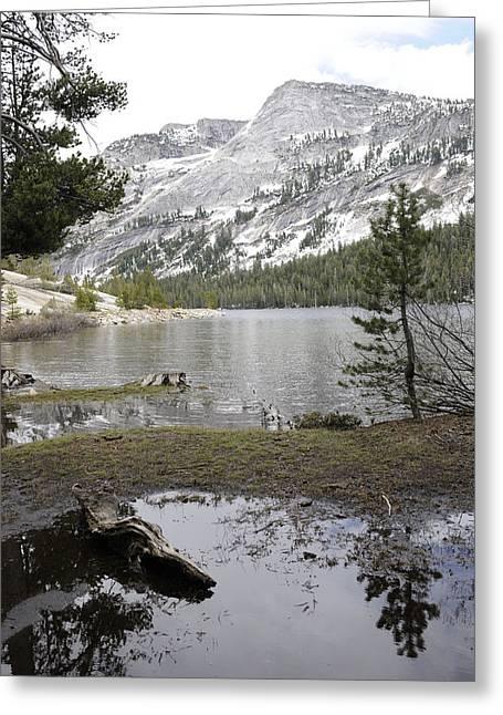 Yosemite Lake Reflections Greeting Card