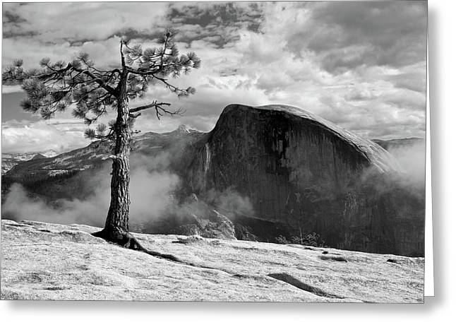 Yosemite Landscape Greeting Card by Chris Brewington Photography LLC