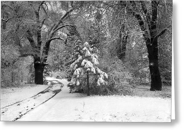 Yosemite Valley Winter Trail Greeting Card by Underwood Archives