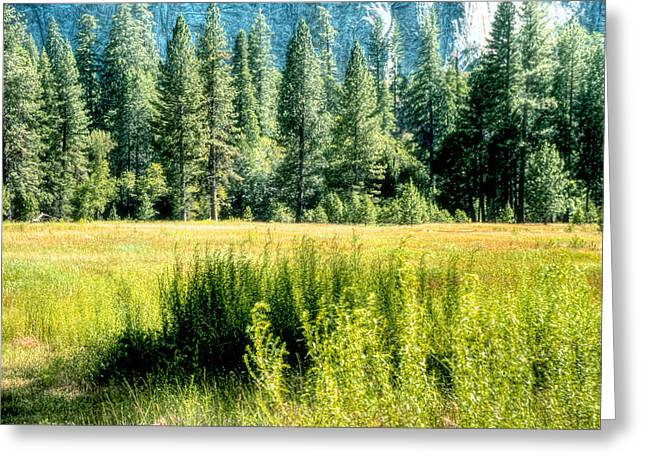 Greeting Card featuring the photograph Yosemite Valley2 by Michael Cleere