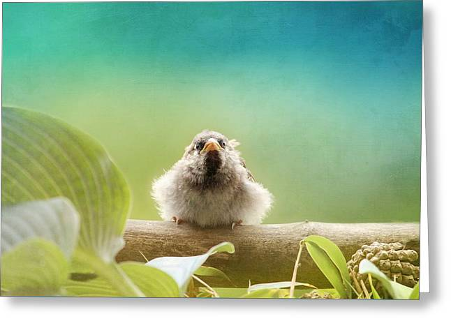 Young Animal Greeting Card by Heike Hultsch