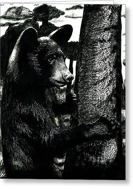 Young Black Bear In Tree  Greeting Card