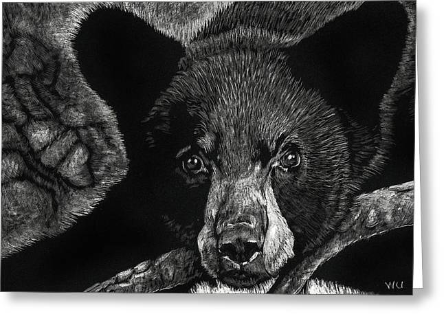 Young Black Bear Greeting Card