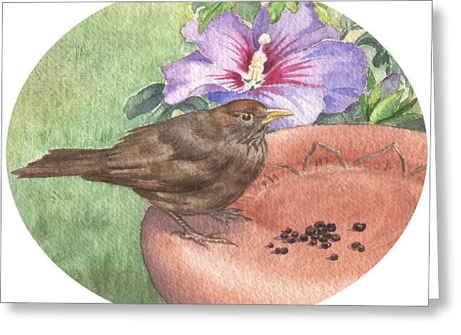 Young Blackbird After Raisins Greeting Card by Maureen Carter