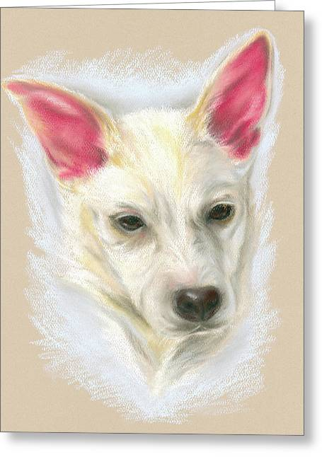 Young Carolina Dog Portrait Greeting Card by MM Anderson