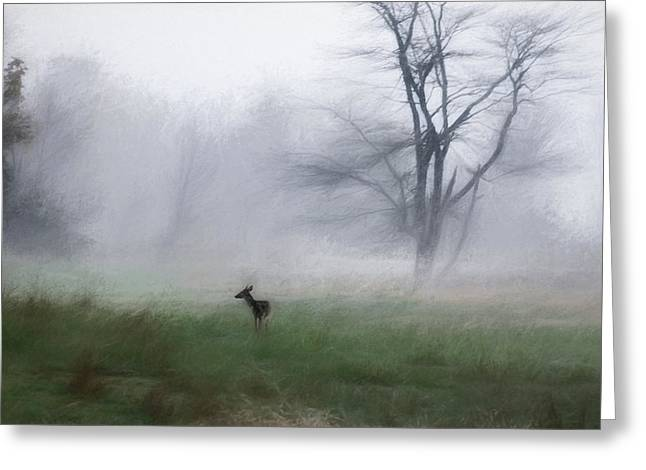 Young Deer And Tree Greeting Card