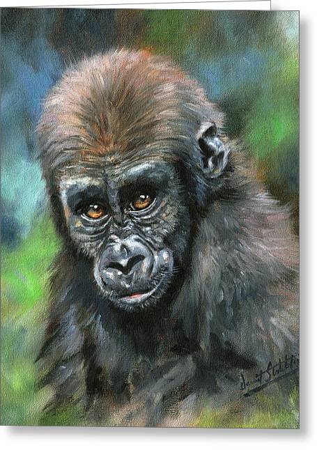 Young Gorilla Greeting Card by David Stribbling