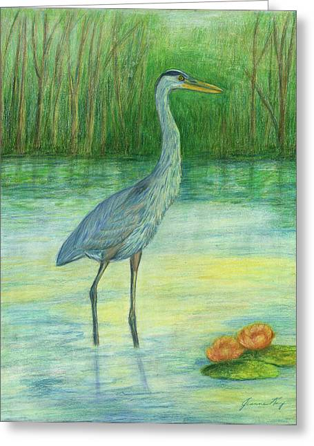 Young Great Blue Heron Greeting Card