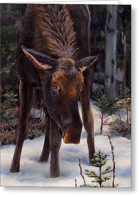 Greeting Card featuring the painting Young Moose And Pussy Willows Springtime In Alaska Wildlife Painting by Karen Whitworth