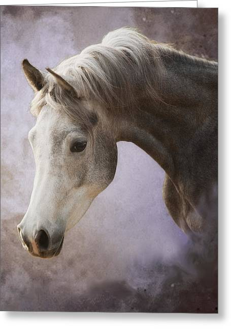 Ron Mcginnis Photography Greeting Cards - Young Prince Greeting Card by Ron  McGinnis