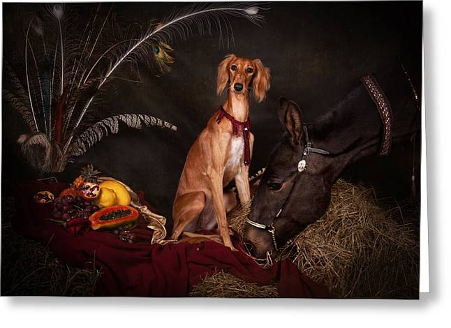 Young Saluki Dog With A Horse Greeting Card