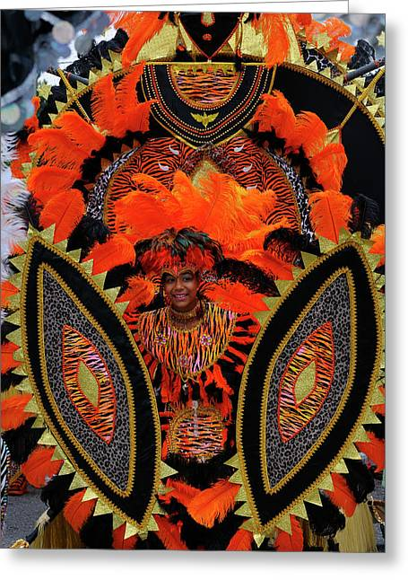 Young Tiger King Of The Band At The Junior Caribana Parade In To Greeting Card by Reimar Gaertner