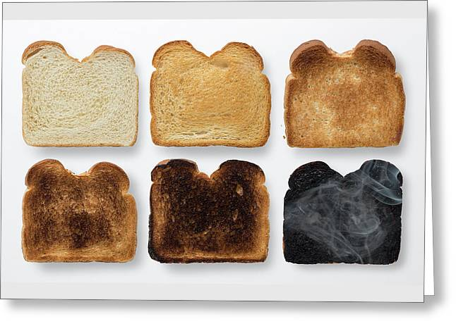 Youre Toast Greeting Card by Steve Gadomski