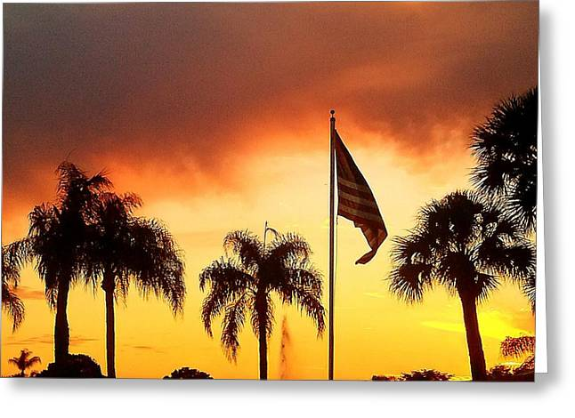 Proud Palm Trees N Old Glory Greeting Card by Judith Asmus Hill