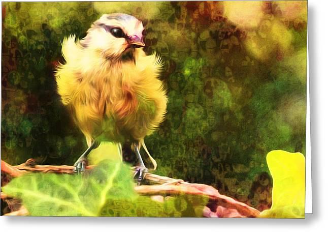 Youthful Blue Tit Bird Greeting Card
