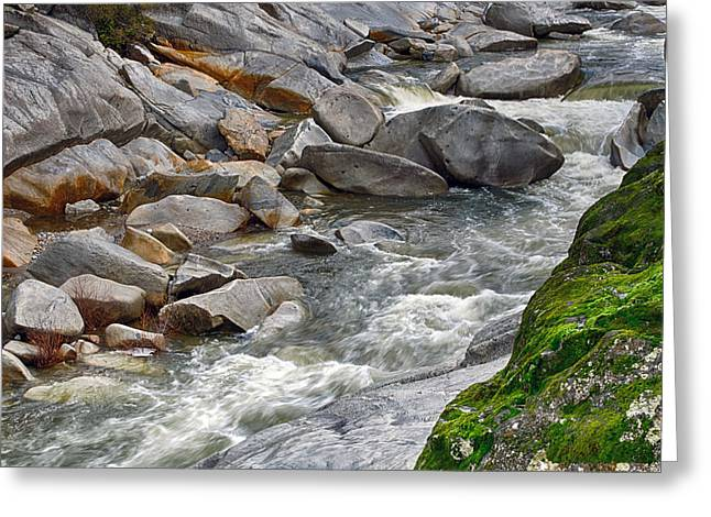 Yuba Is Flowing Greeting Card by William Havle