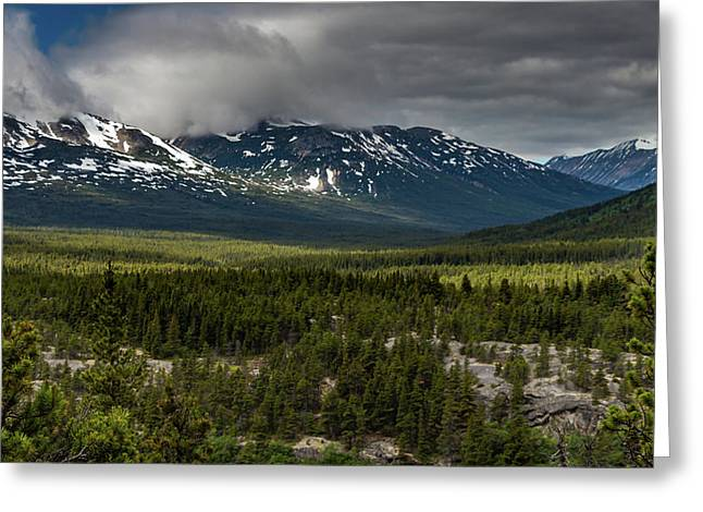 Yukon Wilderness Greeting Card