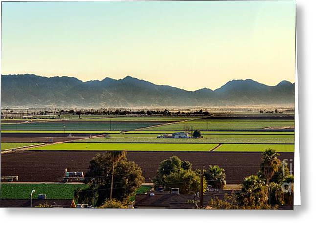 Yuma Valley Greeting Card by Robert Bales
