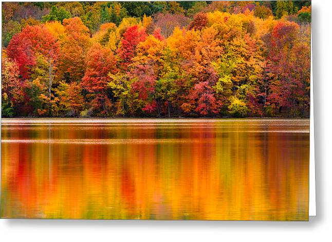 Yummy Autumn Colors Greeting Card