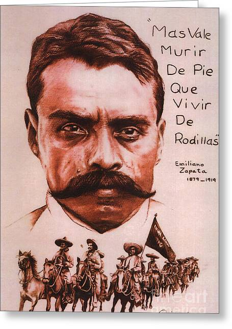 Zapata With Riderless Horse Greeting Card by Bill Olivas
