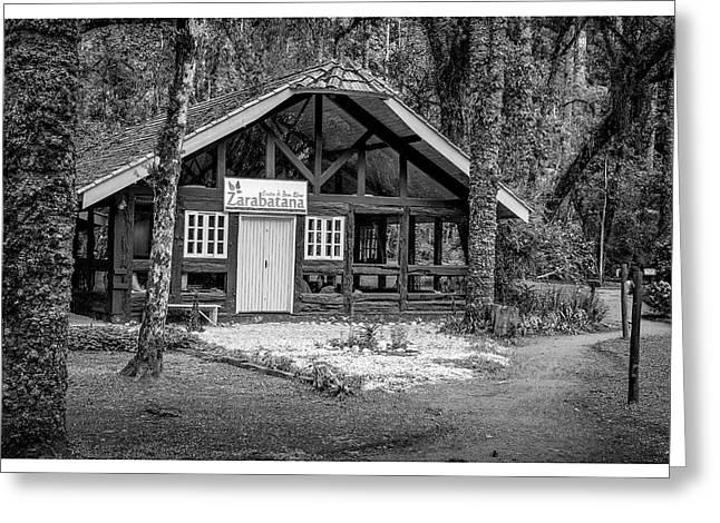 Zarabatana-bosque Do Silencio-campos Do Jordao-sp Greeting Card