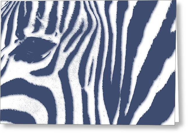 Zebra 2 Greeting Card by Joe Hamilton