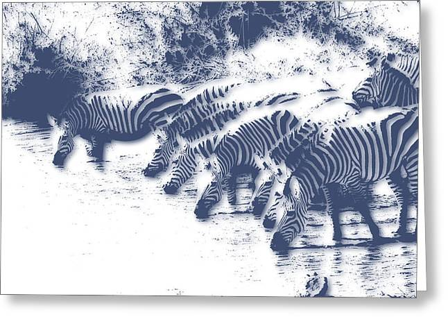 Zebra 3 Greeting Card by Joe Hamilton
