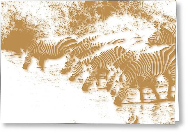 Zebra 6 Greeting Card by Joe Hamilton