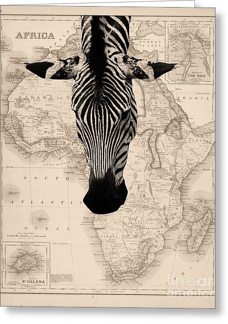 Zebra And Africa Map Greeting Card