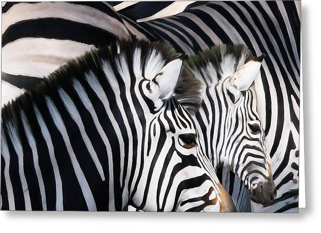 Zebra Family Greeting Card by Johnnie Boswell