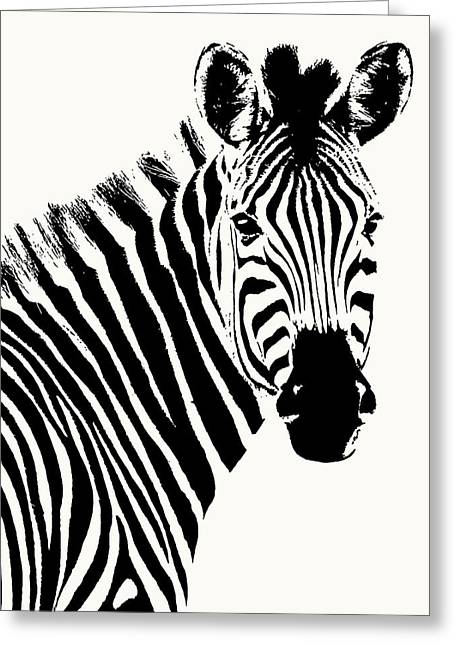 Zebra In Graphic Black And White Greeting Card