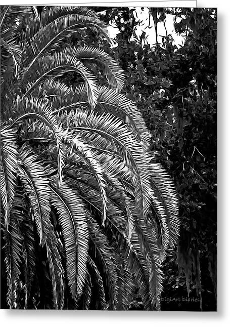 Greeting Card featuring the photograph Zebra Palm by DigiArt Diaries by Vicky B Fuller