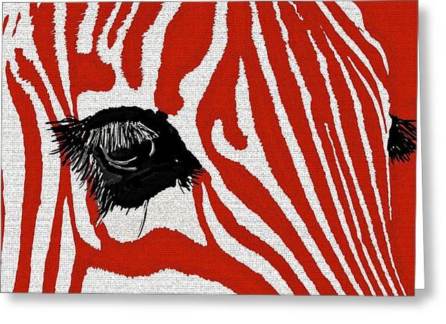 Zebra Red Greeting Card