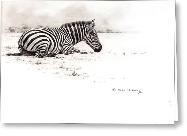Zebra Sketch Greeting Card