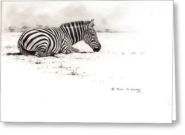 Greeting Card featuring the painting Zebra Sketch by Alan M Hunt