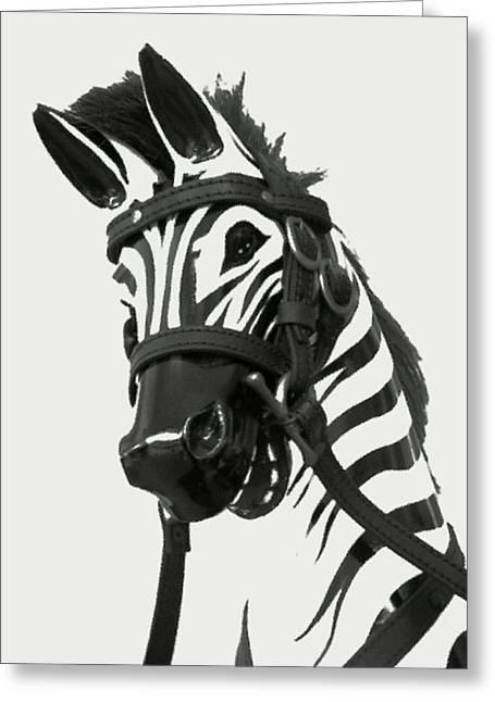 Zebra Smile Greeting Card by Dimas Harjanto