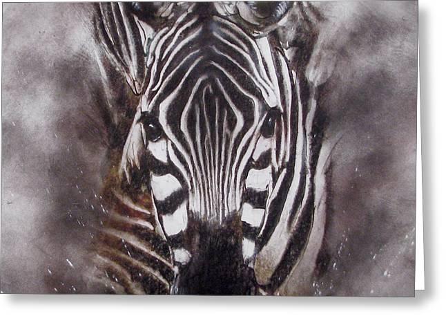 Zebra Splash Greeting Card