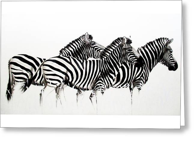 Zebras - Black And White Greeting Card