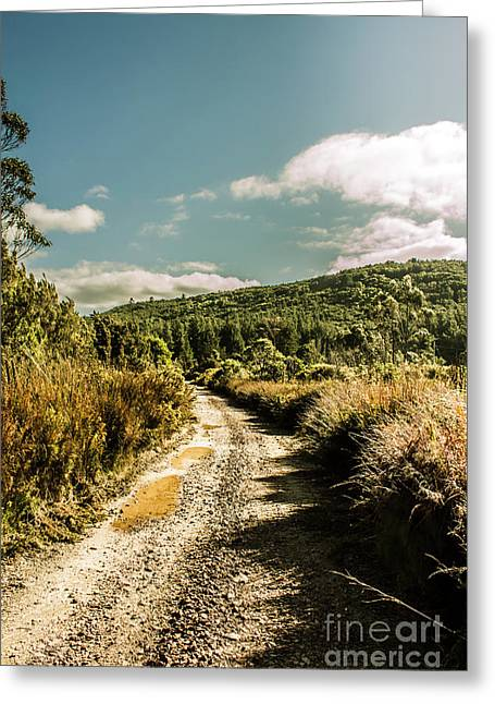 Zeehan Dirt Road Landscape Greeting Card
