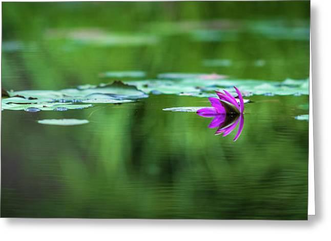 Zen Blossom Greeting Card