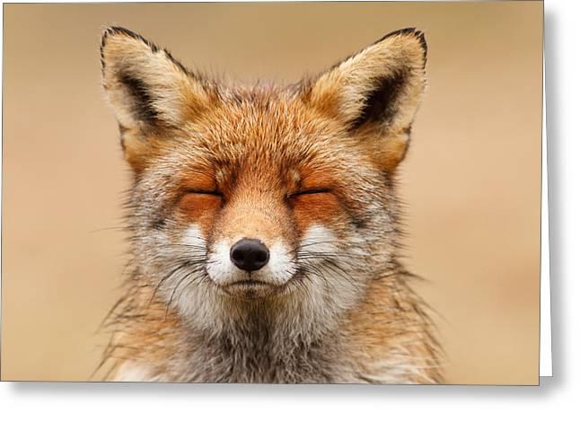Zen Fox Red Fox Portrait Greeting Card