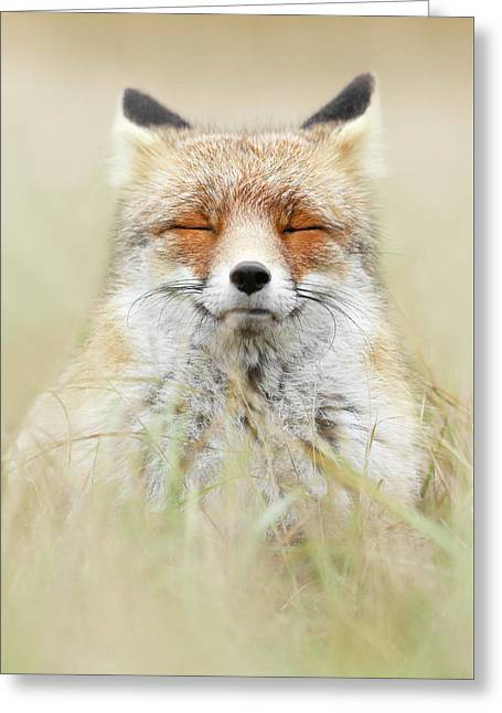 Zen Fox Series - The Mindful Fox Greeting Card by Roeselien Raimond